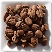 Mexiko Maragogype 100% Arabica 100g - Bohnen