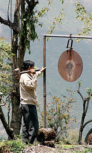 GongTeeplantageDarjeeling