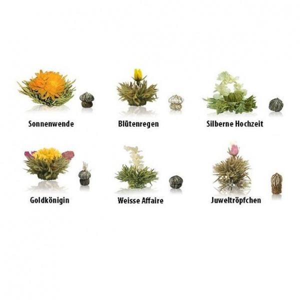Erblühtee 6er Set, Weißtee, Teeblumen, Teeblüten